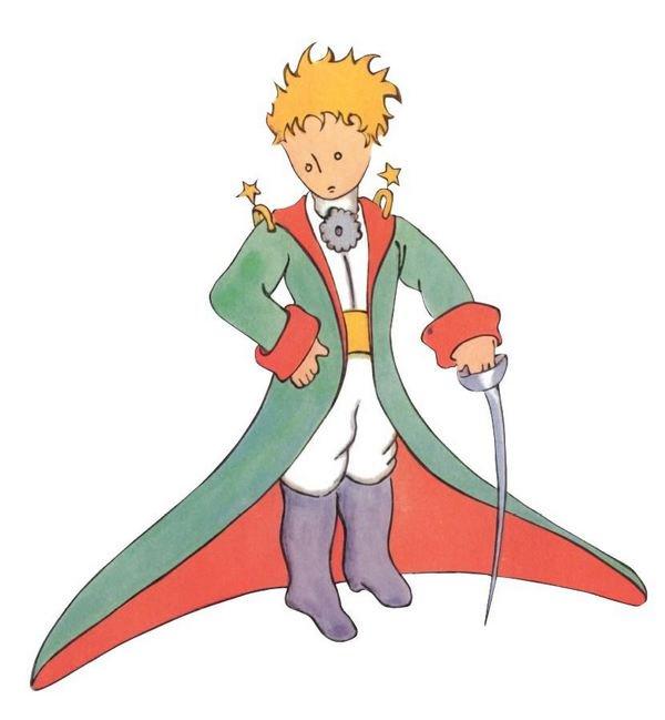 Piccolo Principe Classe 5a Maestramarta
